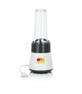 Mini mixeur Smoothie 2 Go